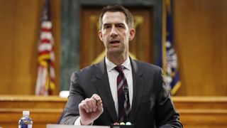 Den republikanske senatoren Tom Cotton.