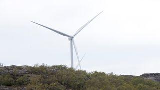 Lokal aksept, subsidiekutt og klare grenser for høyde og antall turbiner er blant kravene Frp har til vindkraftmeldingen