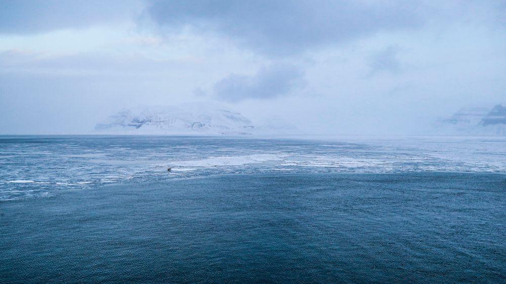 Nye værdata fra Svalbard viser at tallet på kalde dager har blitt halvert siden 90-tallet.