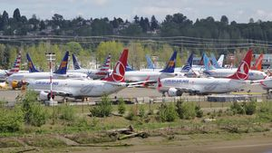 /2586/2586070/Boeing_737_MAX_grounded_aircraft_near_Boeing_Field%2C_April_2019.300x169.jpg