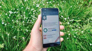 Appen Artsorakelet på en smarttelefon holdt over en gresseng med hvite blomster.