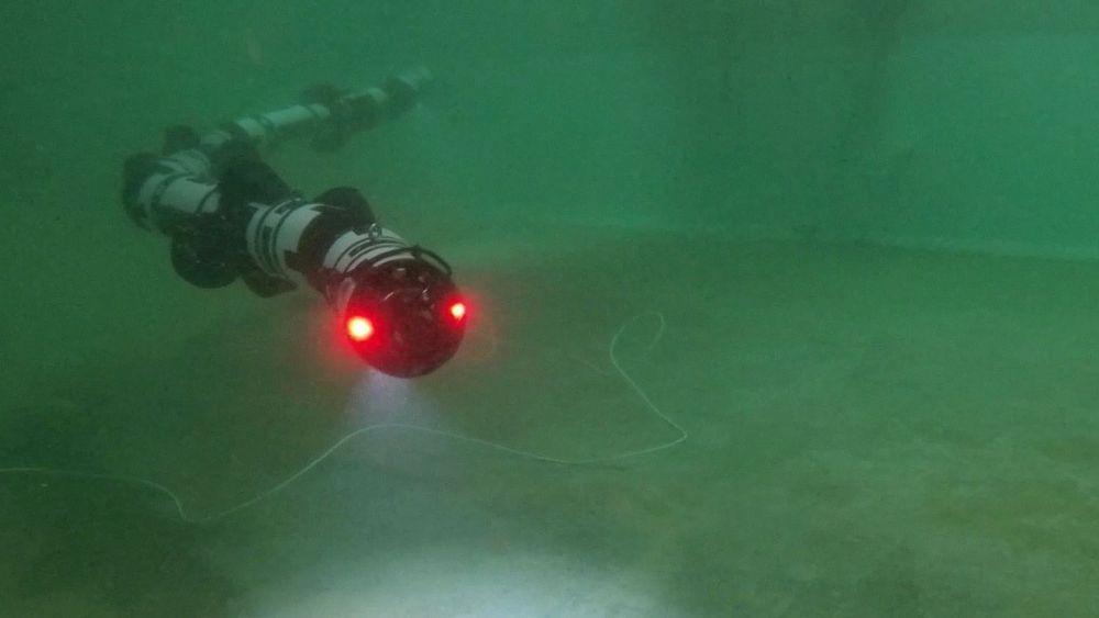 En slangedrone kan være tilgjengelig på havbunnen hele døgnet. De vil kunne være langt mer effektive enn dykkere og skip når man for eksempel skal vedlikeholde en stor vindmøllepark til havs.