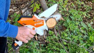 Er du klar for å klippe eller sage grenene? Vi har testet flere modeller