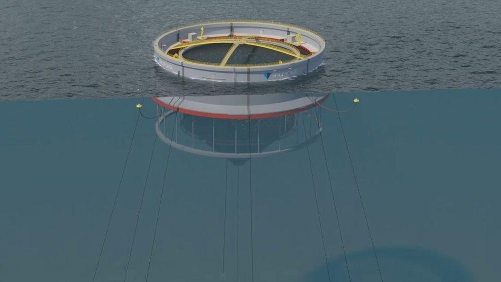 Moss Maritime skal finne ut om Spider Cage skal produsere strøm selv.