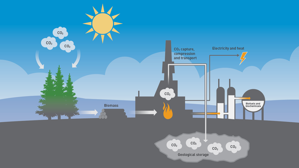Denne prinsippskissen viser fangst og lagring av CO2 fra biomasse – en såkalt klimapositiv løsning.