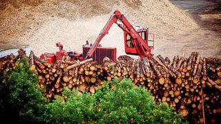 Elkem bygger biokarbonfabrikk i Canada