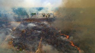 WWF: Snart er jordas ressurser for i år brukt opp Tu.no