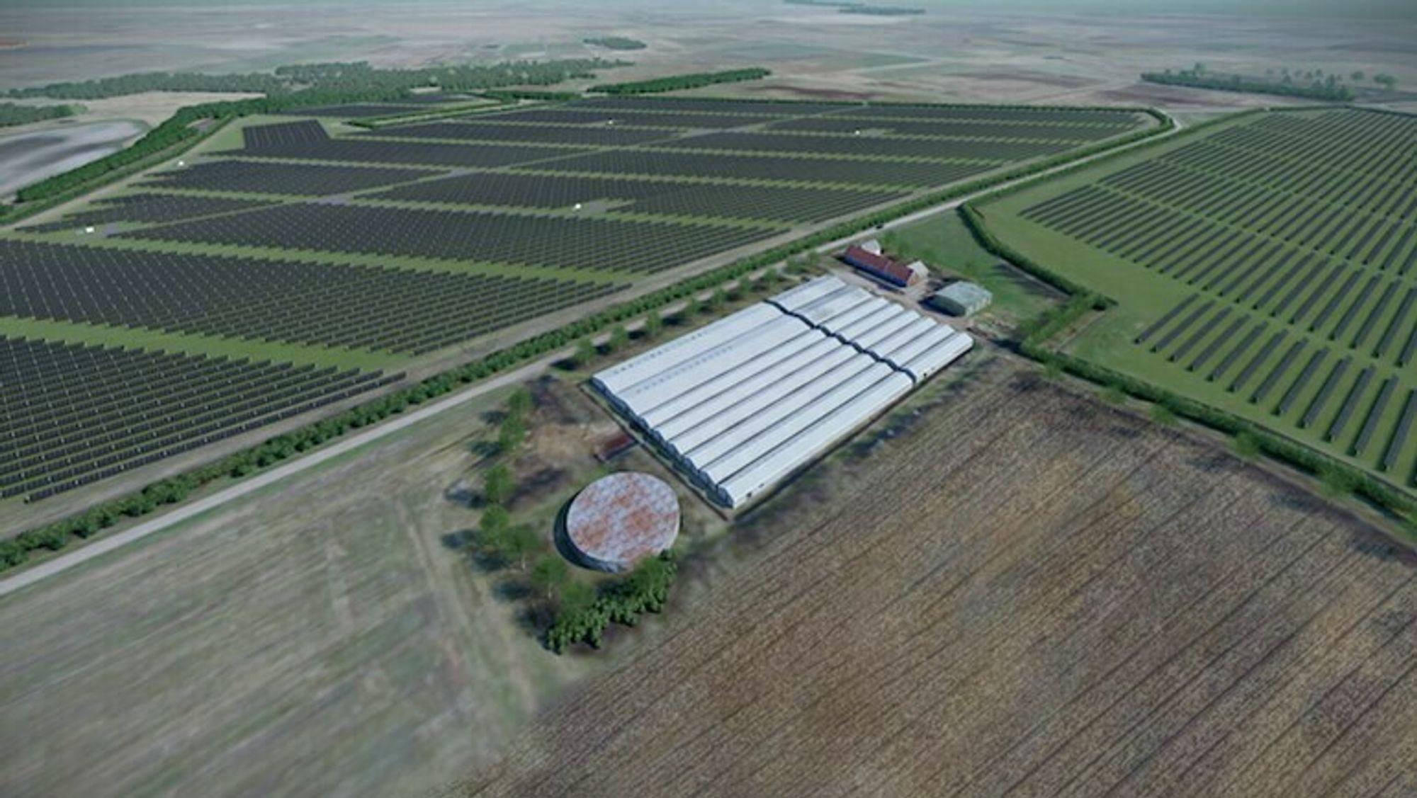 GreenGo Energy vil bygge flere store solenergiparker i Danmark. Parkene finansieres gjennom langsiktige kraftkjøpsavtaler.