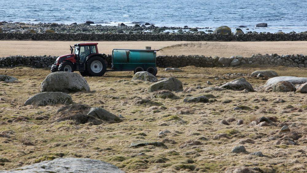 Rockwool skal bruke lokalprodusert biogass fra landbruket til å smelte stein til steinull. Bildet er fra Jæren. Rogaland har hatt som mål at 60 prosent av alt husdyrgjødsel skal innom et biogassanlegg før det spres.