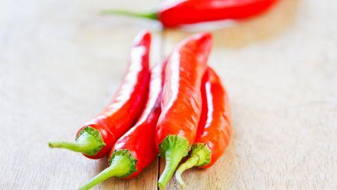 Kommuneoverlegen fant løsningen: Virkestoffet i chili tar livet av lakselus