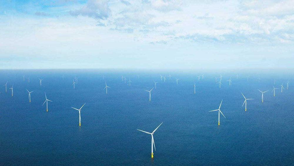 Yara vil produsere hydrogen i Nederland ved hjelp av havvind. Her fra Ørsted sin havvindpark (Borssele 1&2) i Nederland.