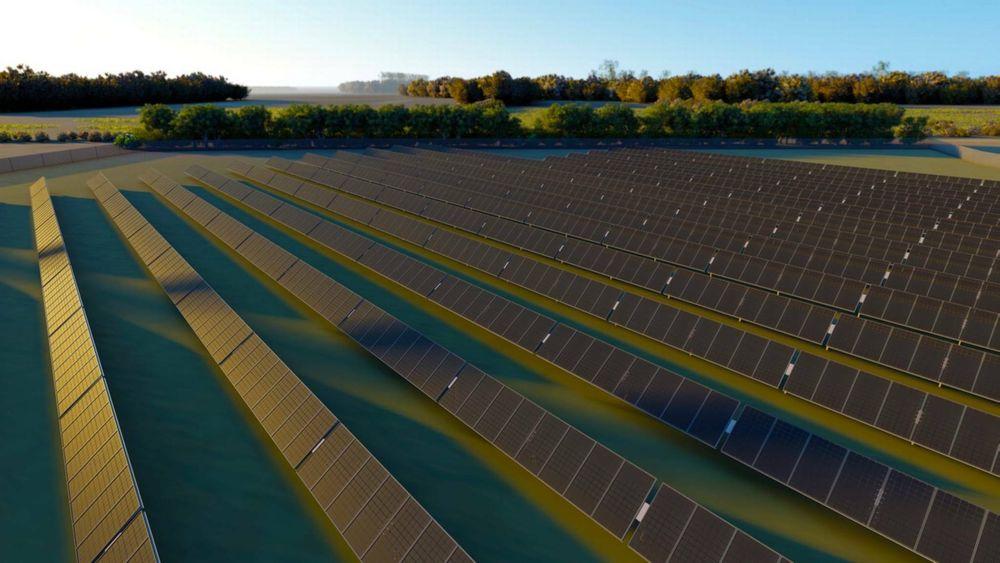 GreenGo jobber med Skandinavias største solcellepark, som vil dekke et område på 250 fotballbaner når det står ferdig – bygget helt uten subsidier.