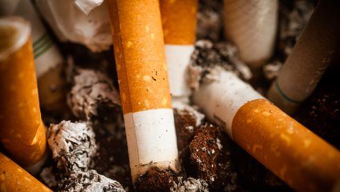 Sigarettsneiper kan gjøre byggematerialer mer bærekraftige