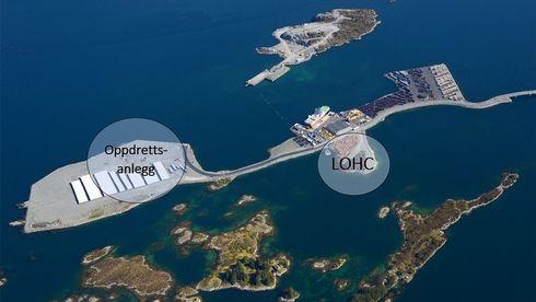 Vil forsyne skipsfarten med hydrogen lagret i olje: Rederier viser stor interesse