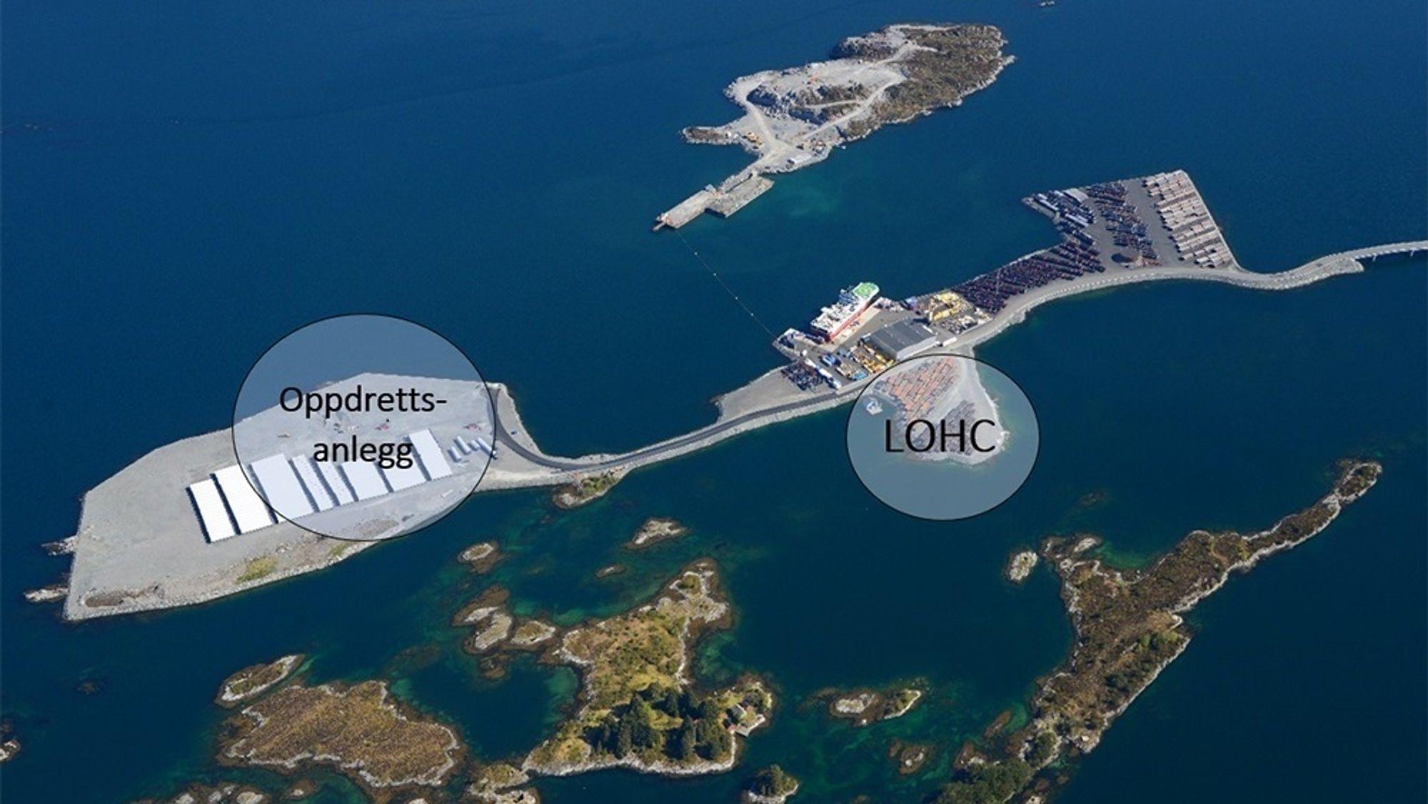Her er det markert hvor INC Invest og Sogn og Fjordane Energi gjennom selskapet Hyfuel vil bygge hydrogenoljenlegget (LOHC).