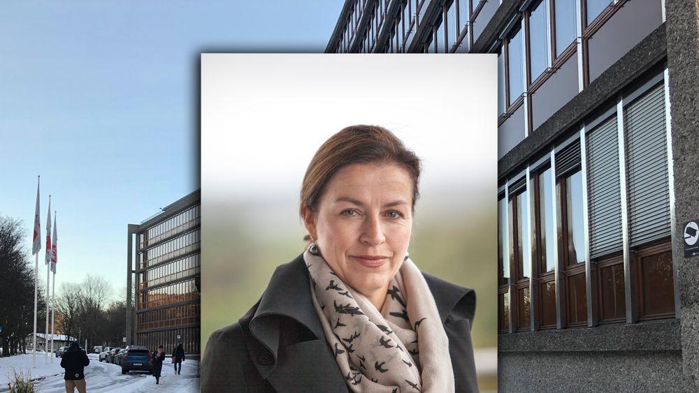 Anne Vera Skrivarhaug er energidirektør i NVE.