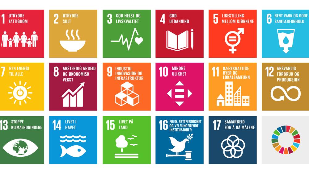 Det går dårlig med oppfølgingen av FNs bærekraftmål i Norge, ifølge Riksrevisjonen.