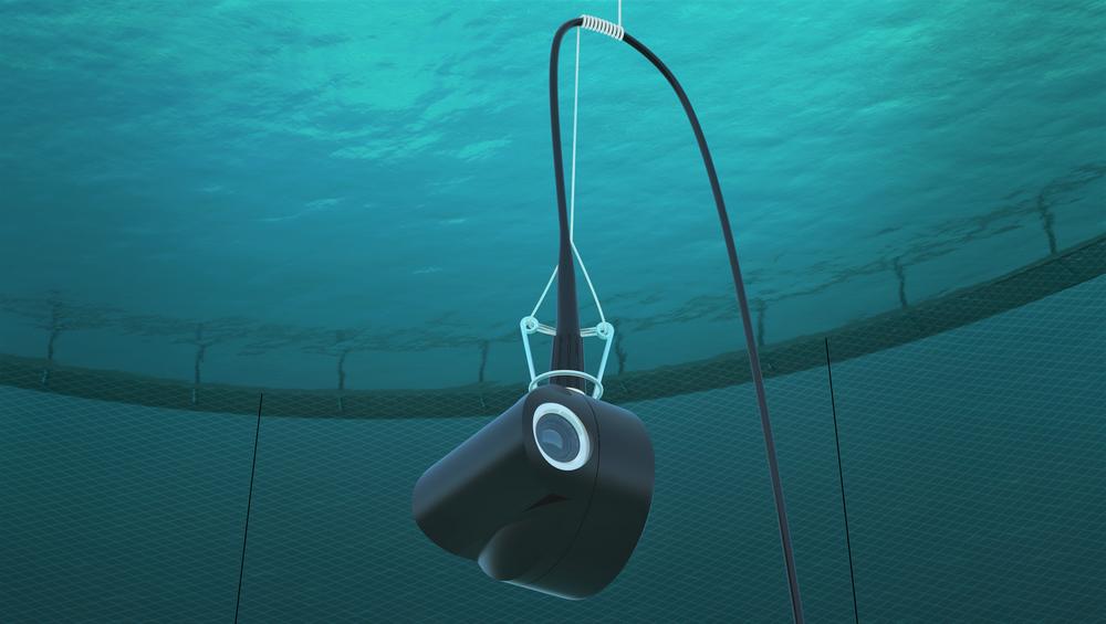 Kameraet er en del av et fjernfôringssystem fra Steinsvik som Teknisk Ukeblad skrev om i 2018. Til sommeren møtes Steinsvik og konkurrenten Fluctus i retten.