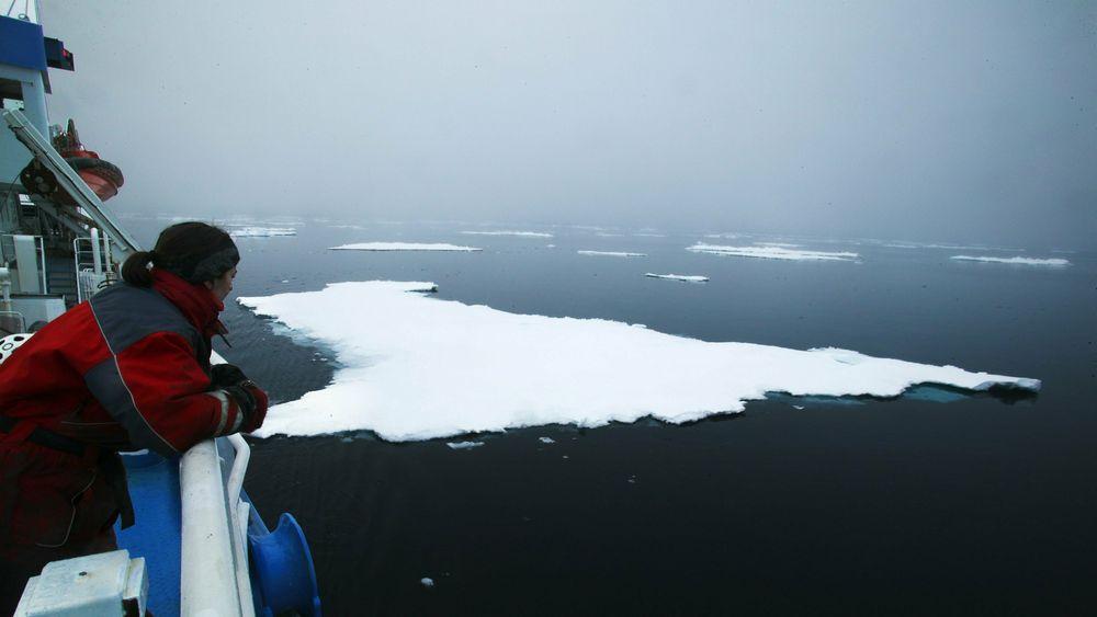 Sommerisen i Arktis blir tynnere og mindre. Når sollyset treffer mørkt hav absorberes varmen istedenfor å reflekteres av hvit is. Dette er den viktigste driveren for fortsatt issmelting.