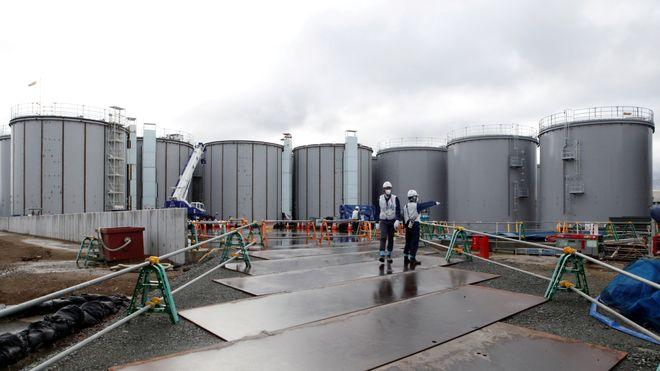 På besøk i Fukushima: Full beskyttelsesdrakt og radioaktive kirsebærtrær