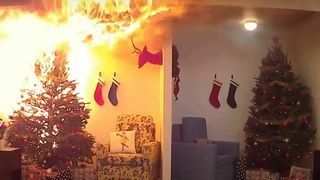 Tørt juletre i full fyr. Vannet juletre med noe røykutvikling.