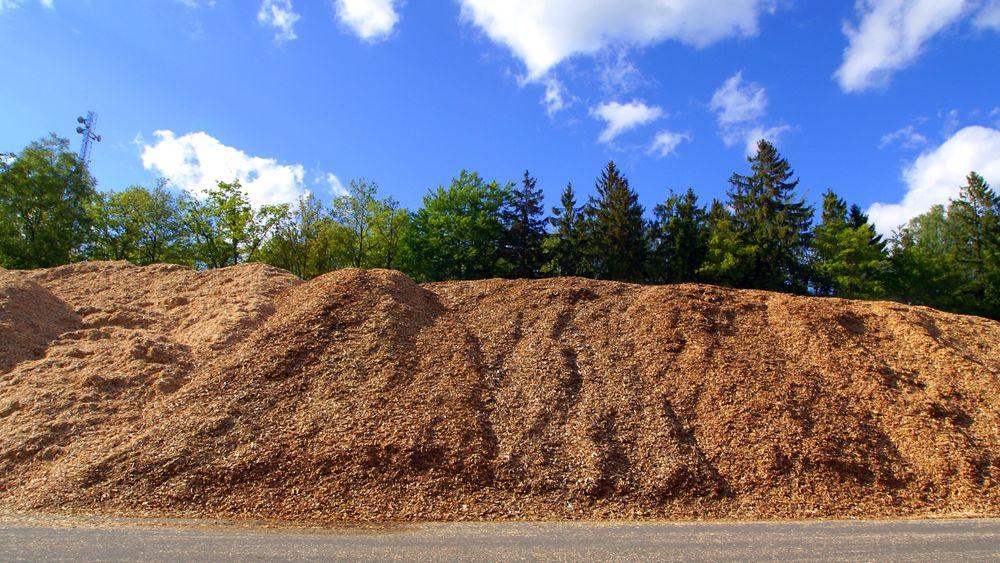 Biomassen har for mye oksygen og for lite hydrogen i forhold til ønsket sluttprodukt. Dette betyr at det er vanskelig å få til god karboneffektivitet uten å tilsette hydrogen i produksjonsprosessen.