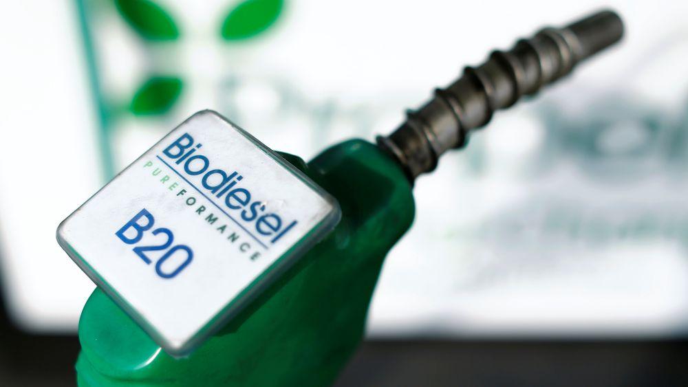 Poenget er at biomasseressursen er begrenset. Vi kan produsere og bruke en god del biodrivstoff, til evig tid, men ikke mer enn det som kan fremstilles på bærekraftig vis, skriver Anders Bjartnes.