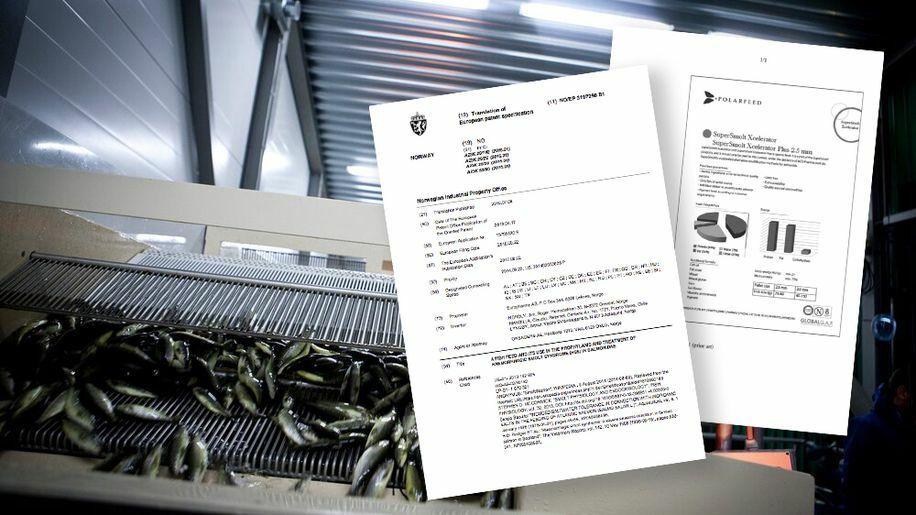 Fiskefôr-patentet har skapt grunnlaget for flere hundre millioner kroner i inntekter.