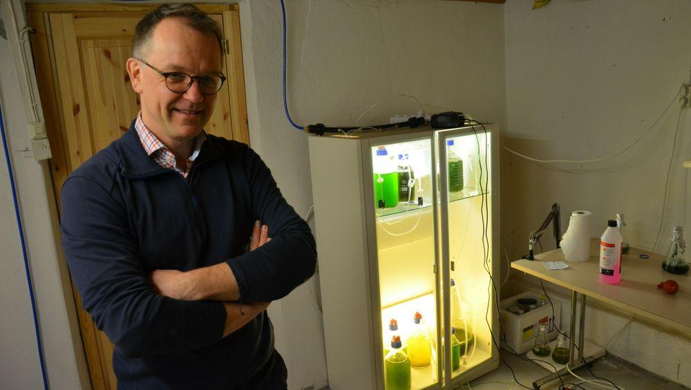 Gabriel Ossenkamp har innredet kjelleren som laboratorium. Målet er å utvikle fargestoff fra alger til bruk i fiskefôr.