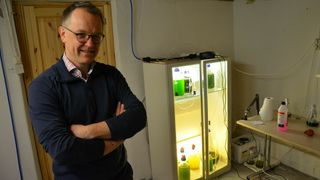 Kjemiker flyttet laboratoriet til hjemmekontoret: Utvikler ny rødfarge til laks