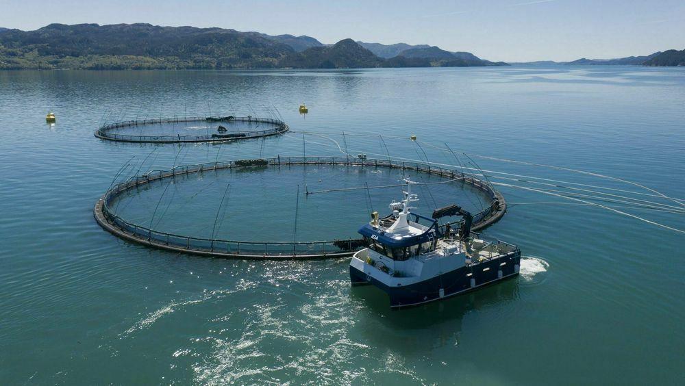 Bremnes Seashore har det første helektriske oppdrettsanlegget. Her med den hybride arbeidskatamaranen Ida. Likevel er det mange anlegg og båter som fortsatt er helt avhengige av diesel.