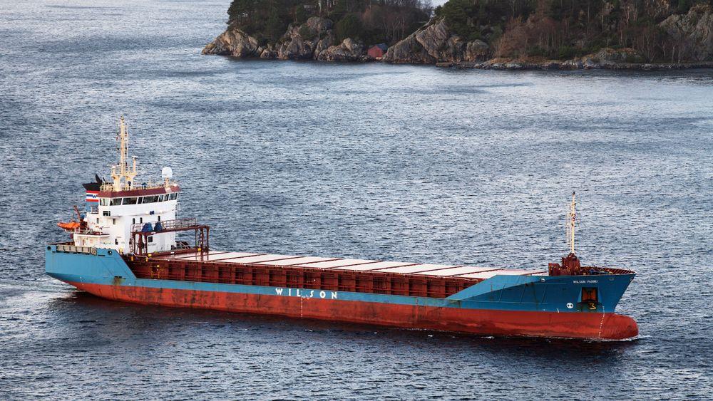 Skipstrafikk utgjør en del av støyforurensningen som kan forstyrre dyrelivet i havet. Bildet viser lasteskipet «Wilson Parnu» på vei mot Bergen i november i fjor.