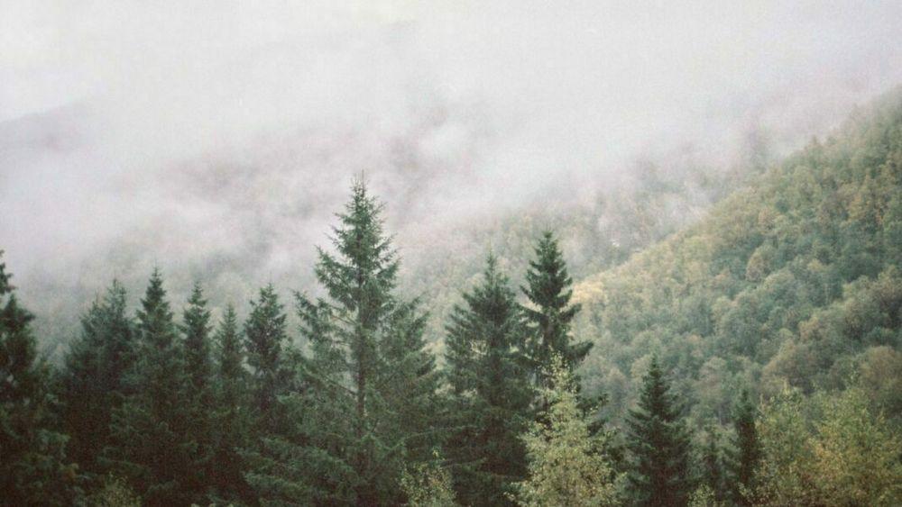 BRANDSTORY: Geografisk teknologi på lag med naturen