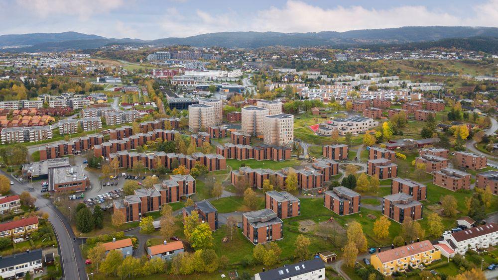 De karakteristiske røde bygningene ligger i Moholt Allé som er en del av Moholt studentby med til sammen 1600 boliger.