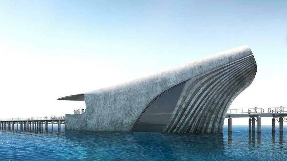 Hval-designet vant da det ble holdt avstemning over arkitektens tre forslag til undervannssenter i Busselton i Australia.