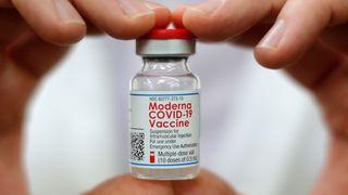 Forskerne tror vaksinering mot korona kan bli like vanlig som mot influensa: Nå kommer de oppdaterte versjonene