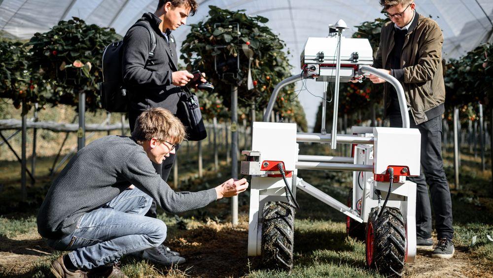 Forretningsmodellen til Saga Robotics er at de leier ut robotene til bøndene, som betaler for hver hektar, kilo eller timer Thorvald er i bruk. Det krever mindre risikovilje og kapital fra bøndenes side, samtidig som det norske selskapet drifter tjenesten og har tilgang til data fra robotene, som de igjen kan bruke til å videreutvikle Thorvald.