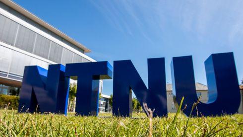 NTNU - logo i gress