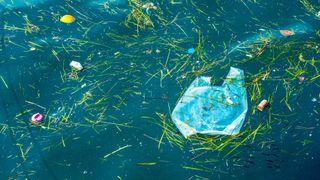 Eksperten svarer: 5 spørsmål om nanoplast i havet