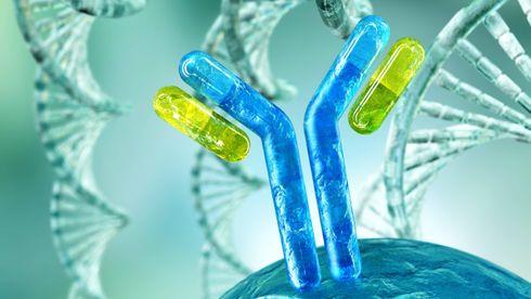 Immunsystemet er et utrolig komplekst forsvarsverk: Slik virker det