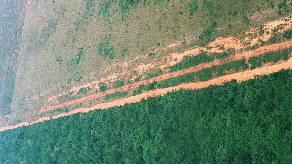 Over store deler av Amazonas har mennesker satt store spor, som her i Brasil. Det er nå bare noen få områder igjen som kan kalles villmark.