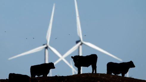 Infralyd fra vindkraft er ikke farlig, viser ny forskning
