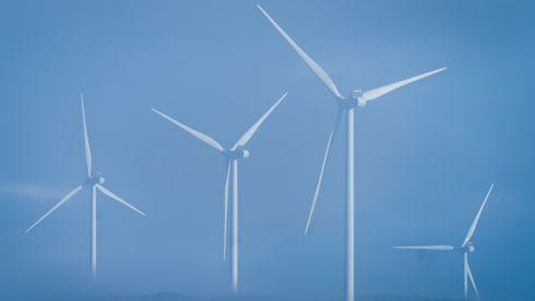 Skaper reaksjoner: Vindkraftselskap nekter å male rotorblader for å redusere fugledød