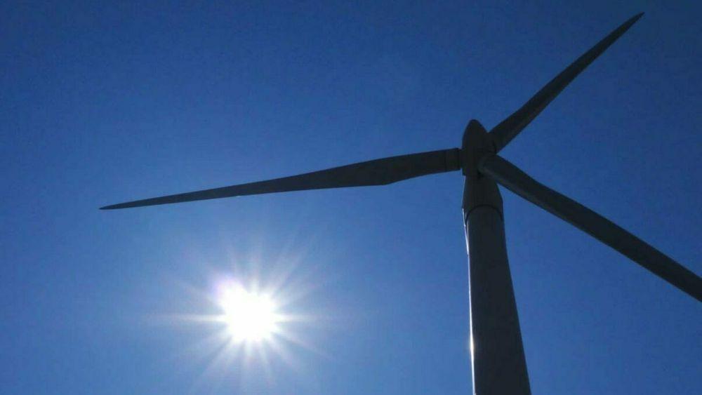 Naturskyddsföreningen mener man kan mangedoble vindkraften i Sverige, uten at det går nevneverdig ut over naturen.