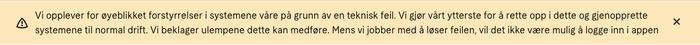 Skjermbilde av feilmelding på Klarnas norske nettside torsdag formiddag.
