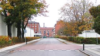 Dette eksempelet på opphøyd kryss i Danmark finnes i Frederiksberg kommune. Dette krysset er etablert med rødt belegg for å gi økt synlighet og oppmerksomhet.