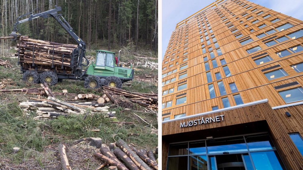 Bruken av massivtre er unødvendig høy i Norge, mener Max Vittrup Jensen. Skogen bruker 60 til 120 år på å reetablere seg etter flatehogst.