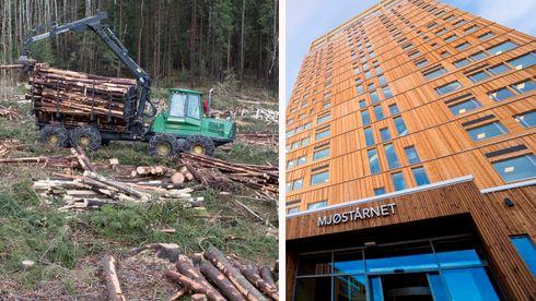 Treindustrien bygg i tre per kristian rørstad Max Vittrup Jensen nmbu norsus biomasse skog hogst klima utslipp trematerialer massivtre parisavtalen