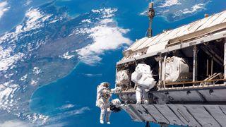 313 nordmenn vil bli astronauter