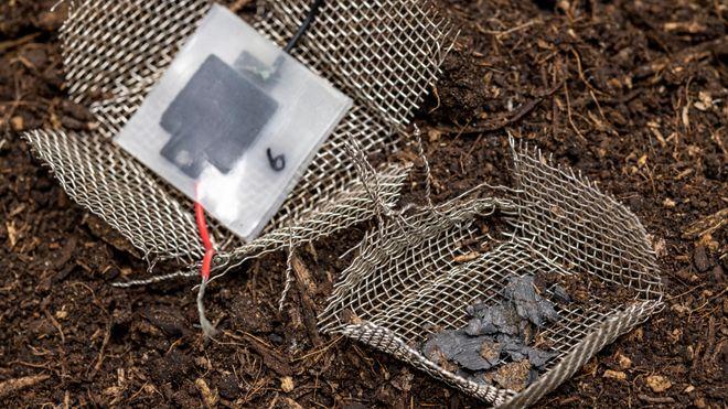Etter to måneder begravd i jorden har kondensatoren gått i oppløsning, og etterlatt bare noen få synlige karbonpartikler.